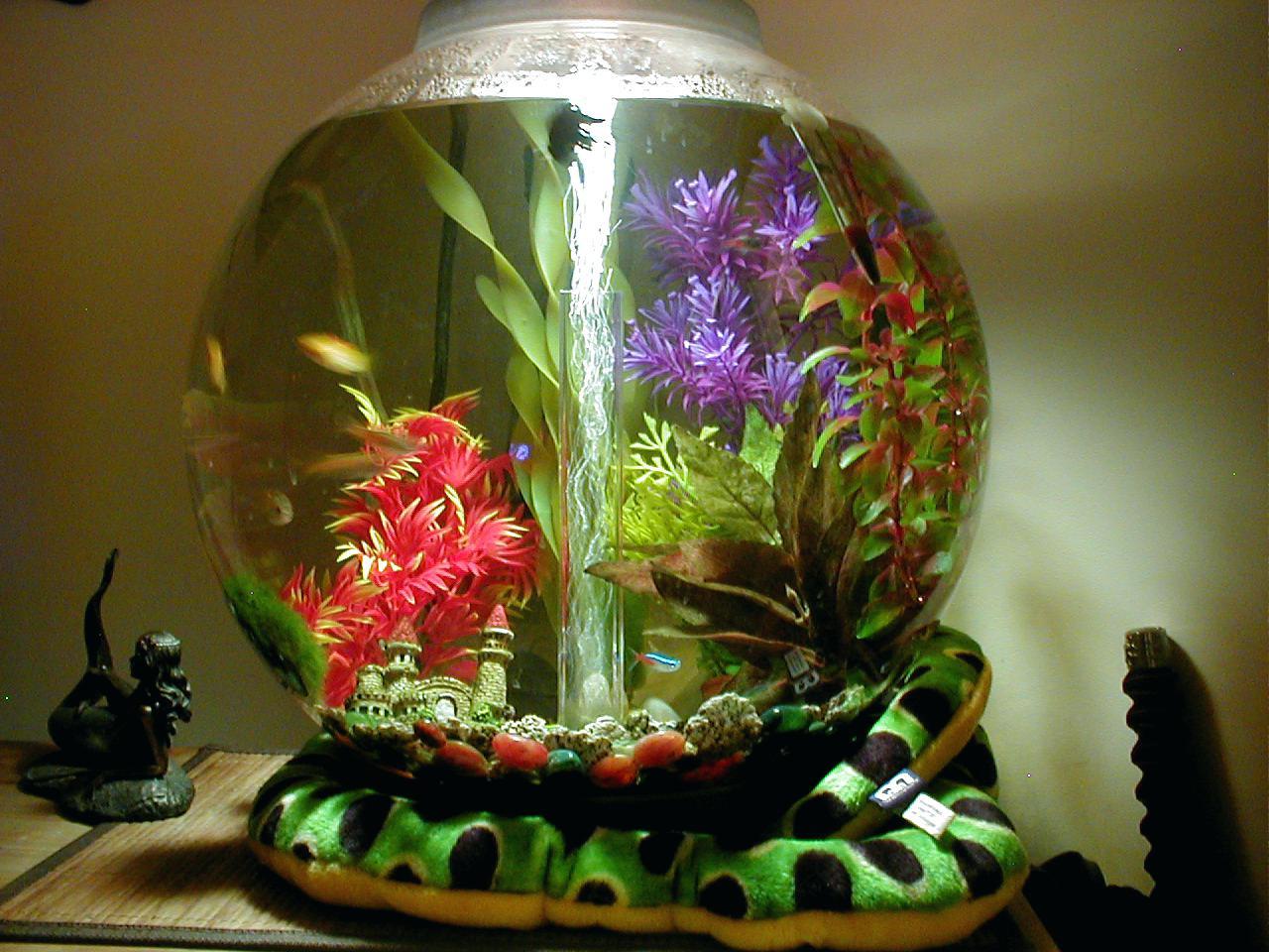 Как украсить аквариум своими руками фото 57